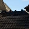 20160806_192445_TL_Mommenheim_B3_Gaustrasse_30-1024x652