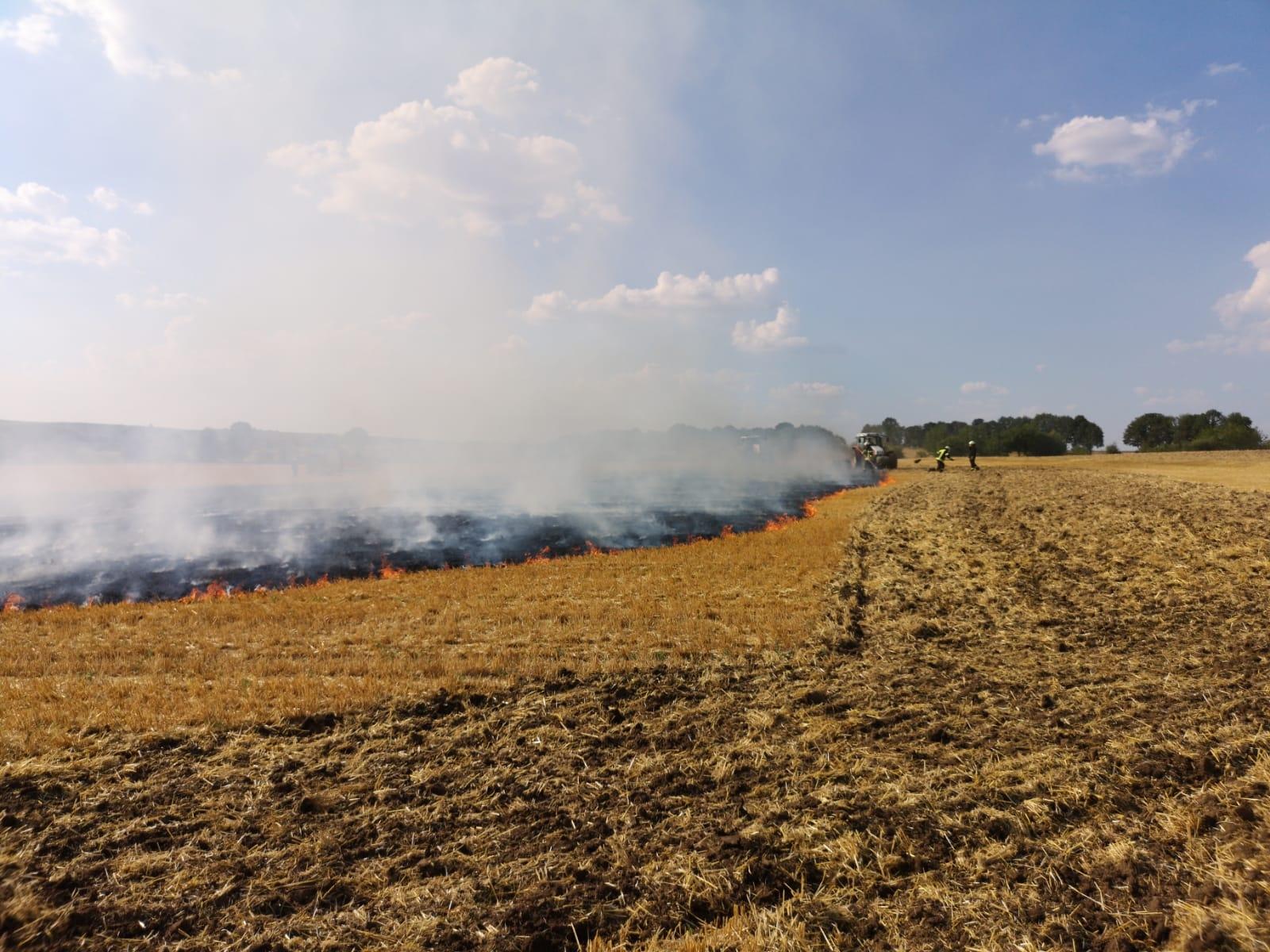 B1 Flächenbrand 05 2018-07-27